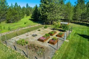 Fenced, raised beds, apple trees and more. Sprinkler system too.