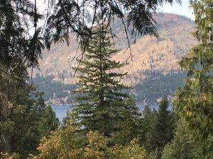 NKA Lakeview Rd, Bayview, ID 83803