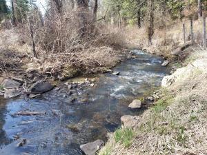 creek spring wide