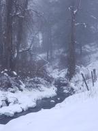 creek snow nice