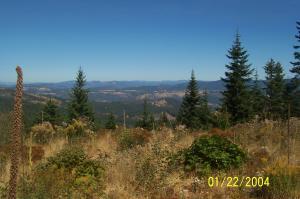 Best View Cherry Creek lower 20
