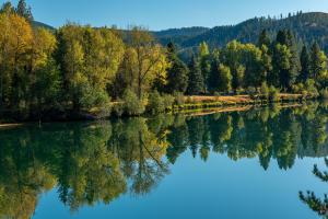 Coeur d'Alene River Frontage