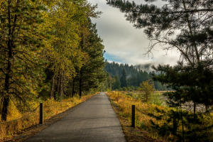 The Trail of the Coeur d'Alene (1)