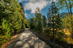 The Trail of the Coeur d'Alene