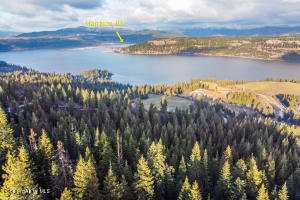 34.38 Acres/4 parcels, boat launch just 5 minutes away!
