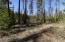 next to 1000s of acres of USFS