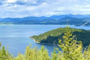 Cabinet Mountain Views