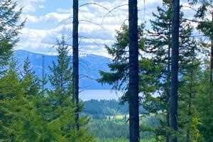 Schweitzer Mountain Resort Views