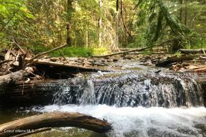 NNA Trapper Creek, Sandpoint, ID 83864