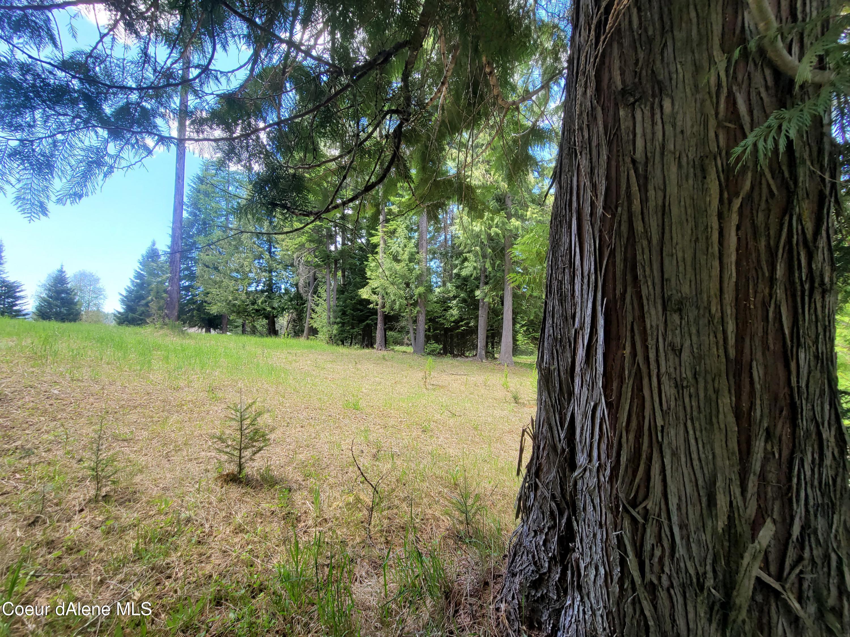 photo of   Jacobson Lane Kingston Idaho 83839