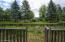 Pond-Lots of Wildlife