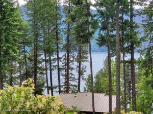 Filtered Lake View