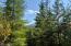 Meadowlark Drive in Crystal Creek!