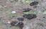 1200 Meadowlark Drive, Fernwood, ID 83830