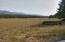 HUGE pasture!