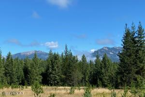 Full Scotchman Peak Views