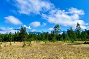 Beautiful Pastures & Forests