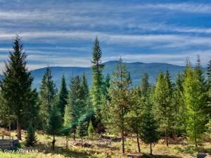 Spacious Mountain Retreat