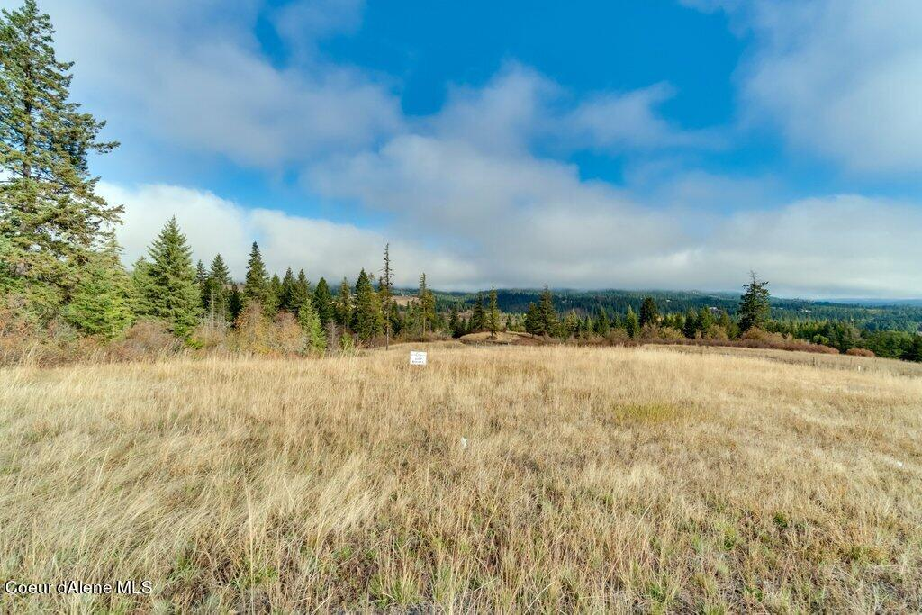 15707 S CHALONE DR, Coeur d'Alene, ID 83814