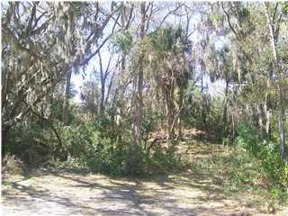 8 Oristo Ridge Road UNIT B Edisto Island, SC 29438