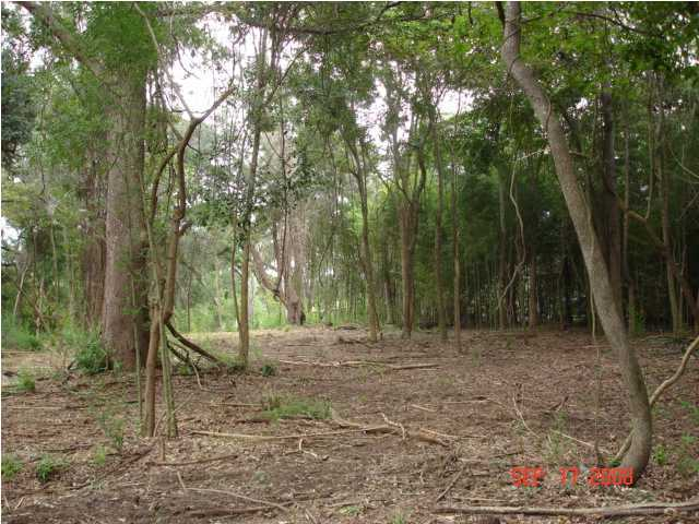 3 Mateeba Gardens Road Summerville, SC 29483