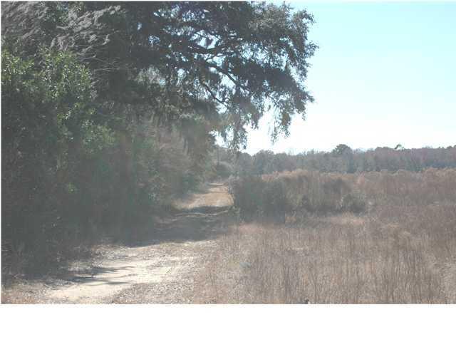 13 Jenkins Hill Road Edisto Island, SC 29438