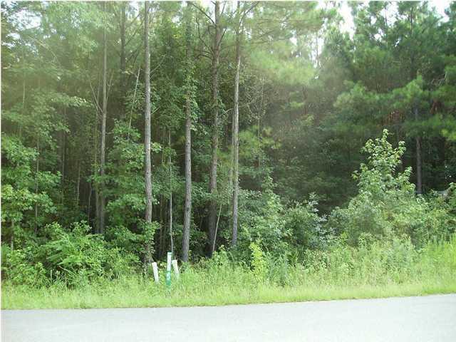 McMakin Drive Summerville, SC 29483