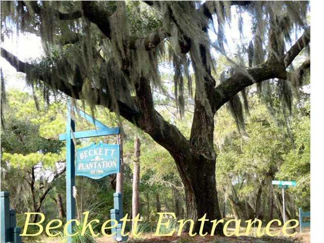 27 Whooping Island Creek Drive Edisto Island, SC 29438