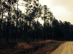 0 Landry Farms Way, McClellanville, SC 29458