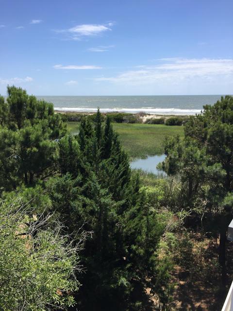 Dewees Island Homes For Sale - 391 Pelican Flight, Dewees Island, SC - 42