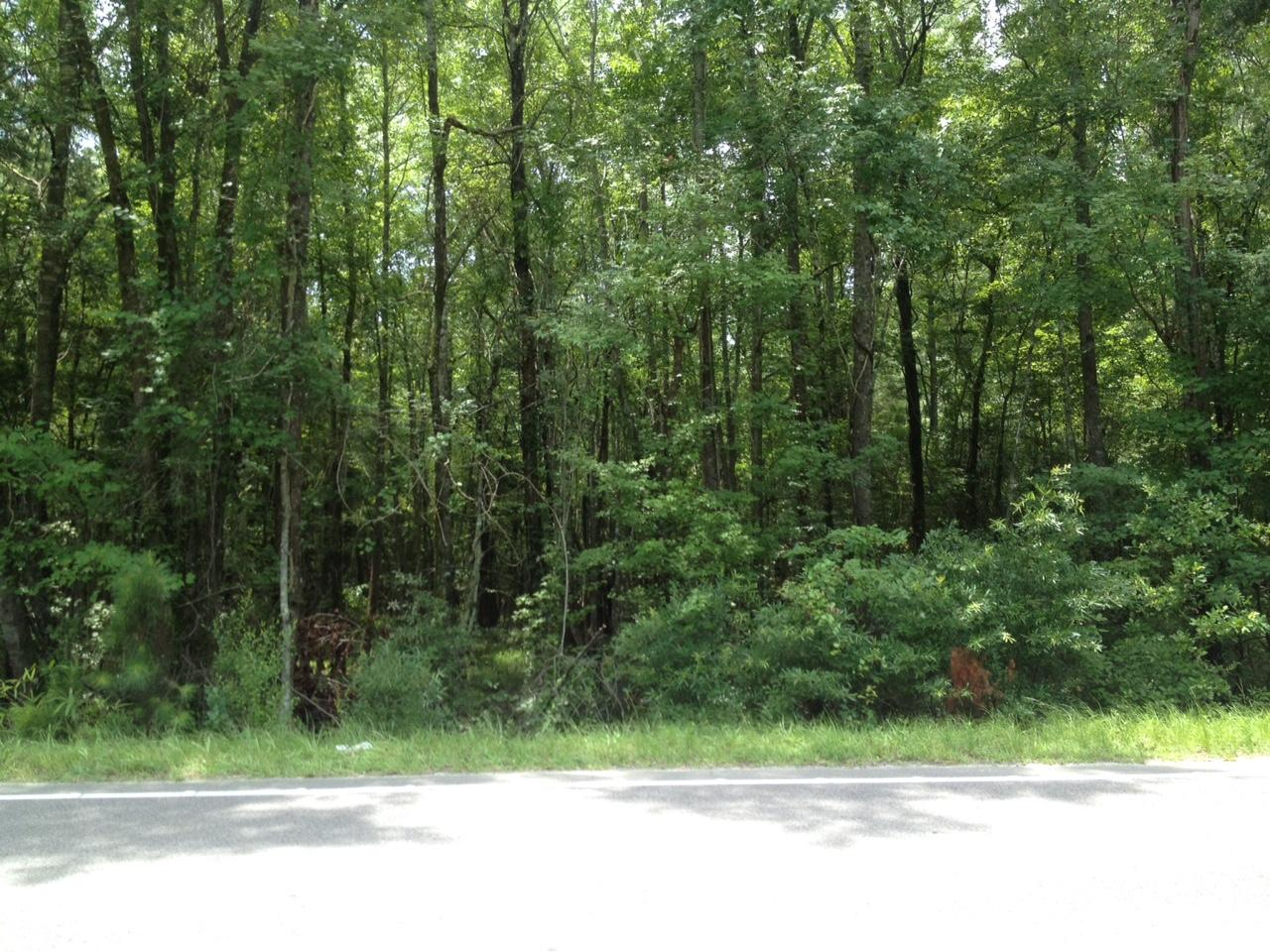 MLS# 15018015   Highway 61 Ridgeville SC   None subdivision