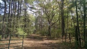 Property for sale at 0 Orangeburg Road, Summerville,  South Carolina 29483