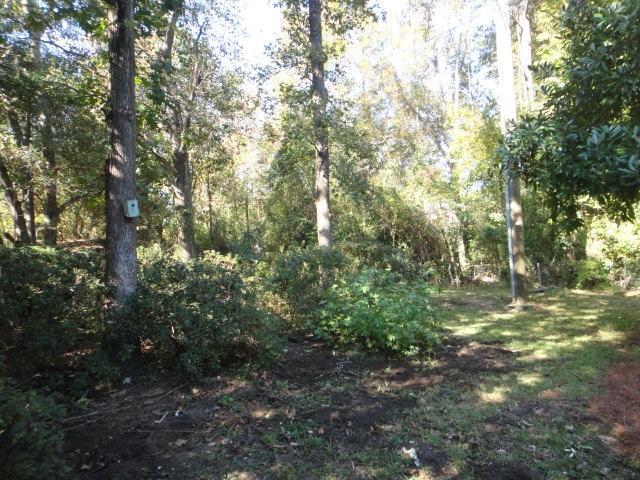 844 Muirwood Circle Mount Pleasant, SC 29464