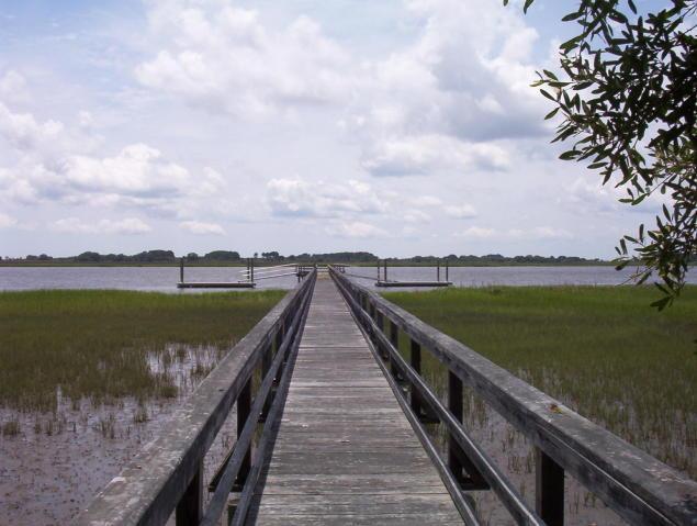189 Bennetts Island Drive Green Pond, SC 29446