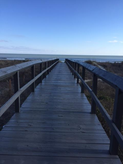 Isle of Palms Condos For Sale - 1126 Ocean, Isle of Palms, SC - 3