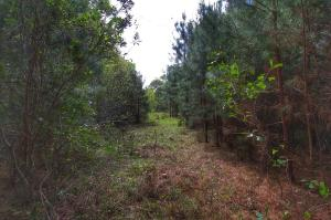 Lot 73 Jibe Court, Mount Pleasant, SC 29429