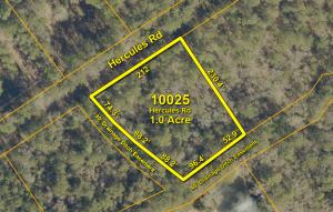 10025 Hercules Road, McClellanville, SC 29458