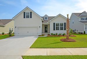 252 Swallowtail Court, Mount Pleasant, SC 29464