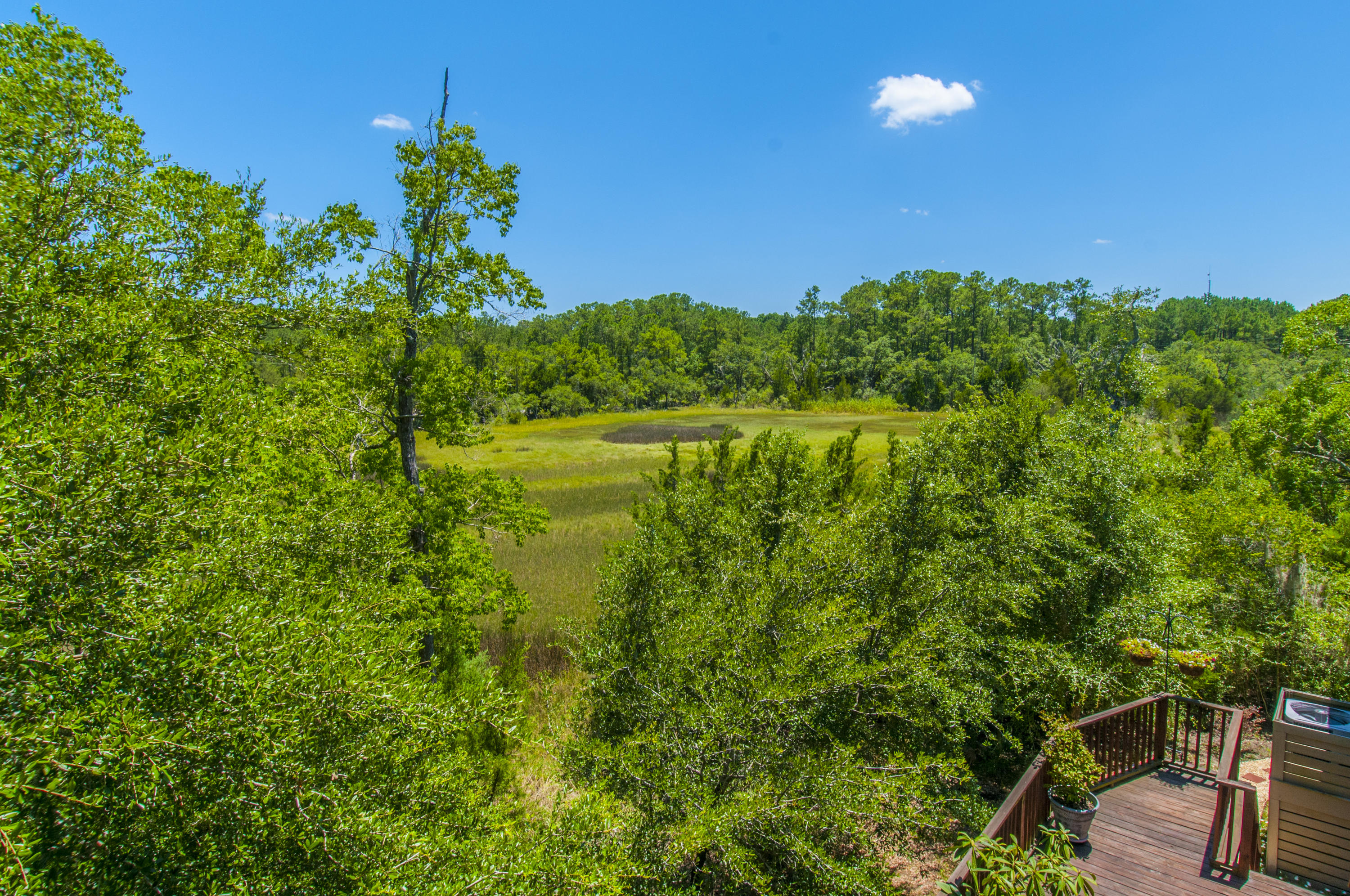 The Marshes at Rushland Landing Homes For Sale - 3022 Rushland Mews, Johns Island, SC - 20