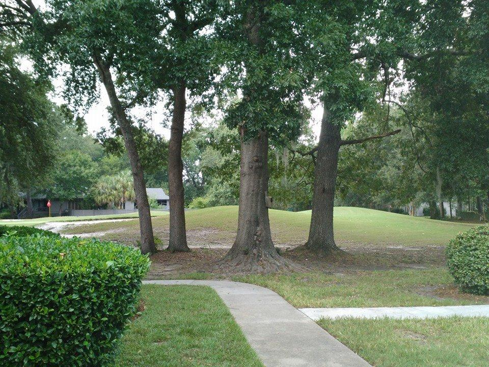 Old Towne Villas Homes For Sale - 2903 Cathedral, Charleston, SC - 32