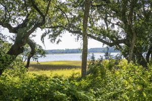124 Fairbanks Oak Aly, Charleston, SC 29492