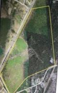 449 Campbell Thickett, Ridgeville, SC 29472