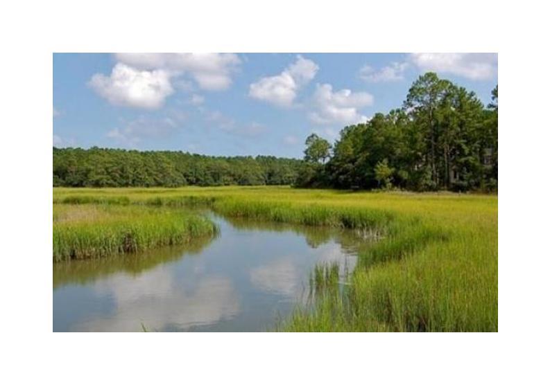 Grassy Creek Homes For Sale - 385 Shoals, Mount Pleasant, SC - 25