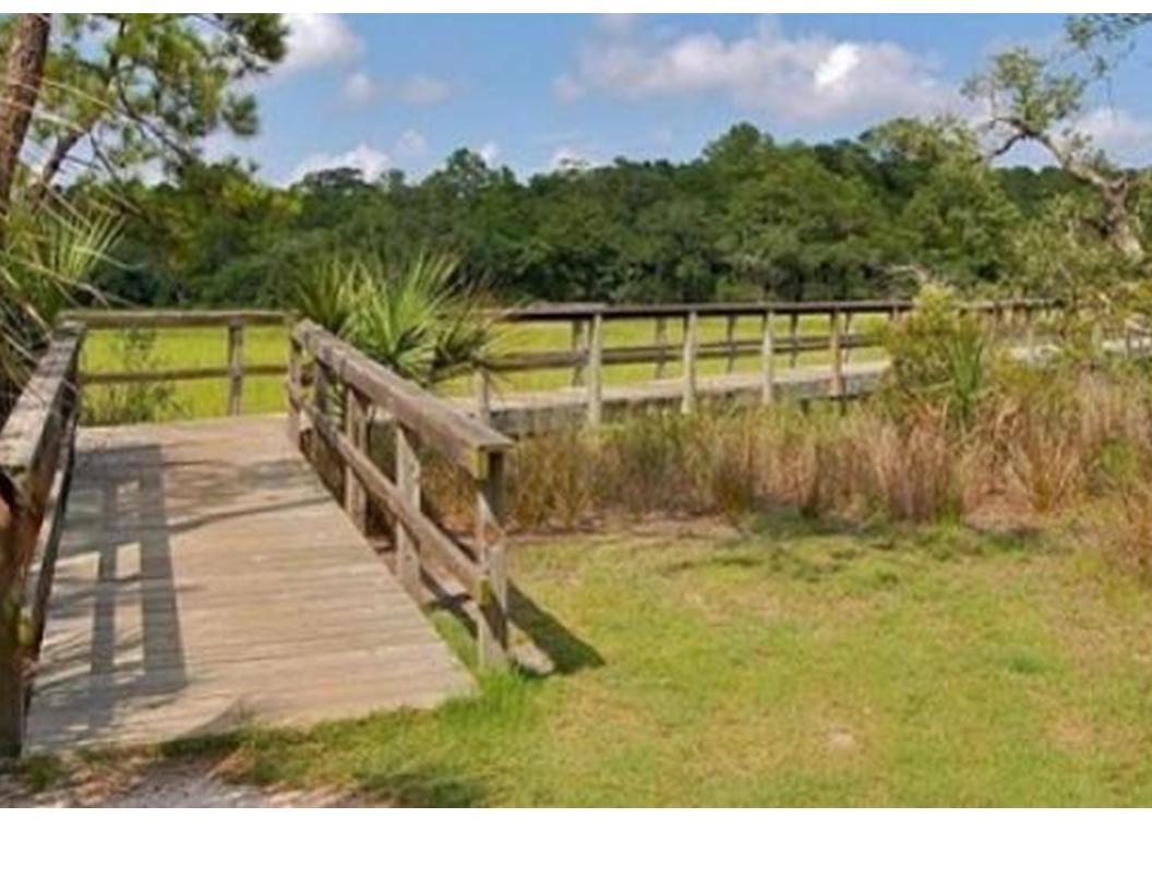 Grassy Creek Homes For Sale - 385 Shoals, Mount Pleasant, SC - 27