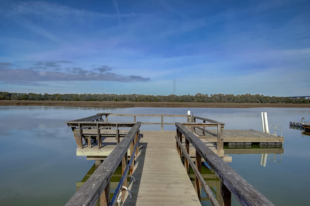 None Lots For Sale - 1001 Palm, Isle of Palms, SC - 16