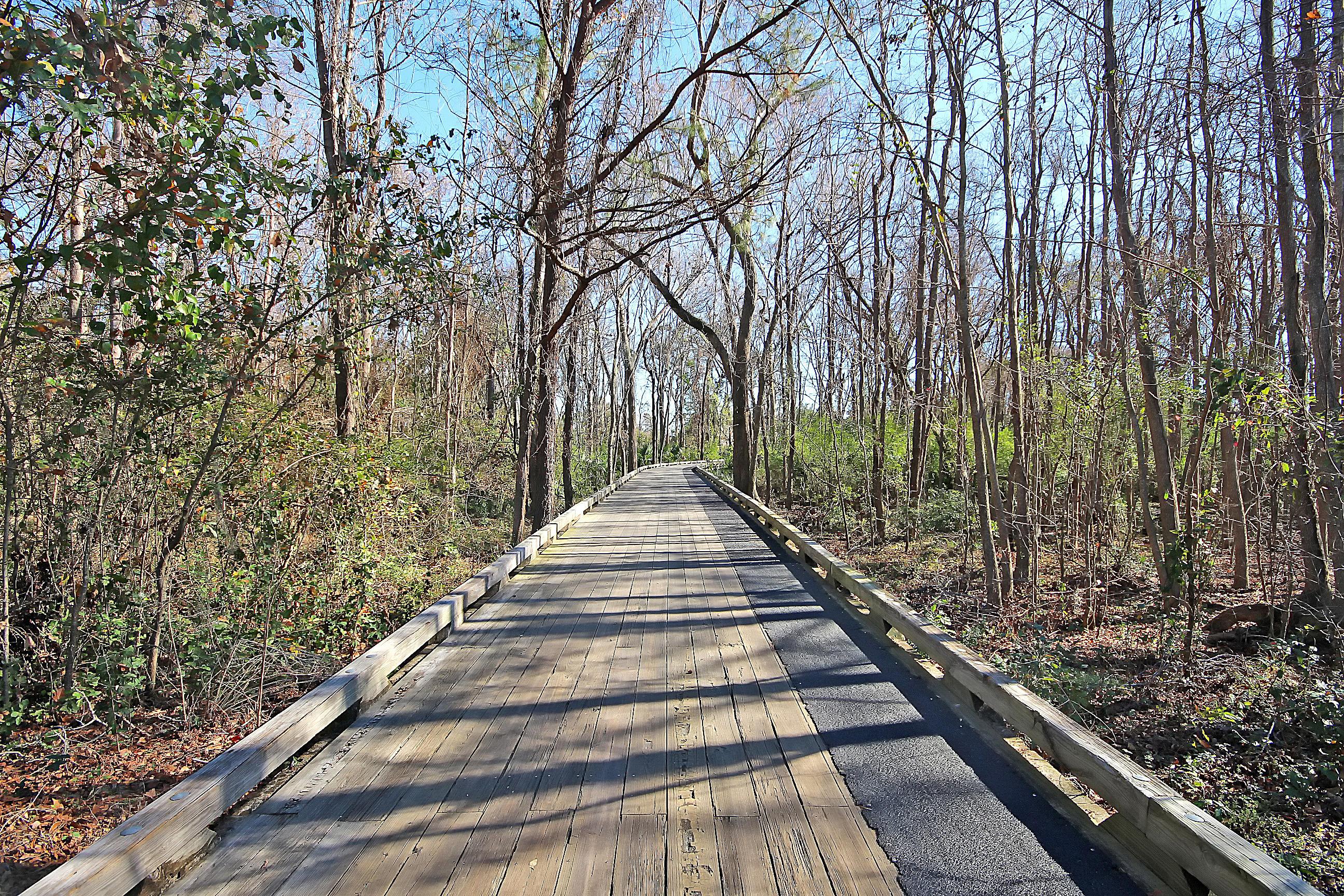 173 River Green Place Daniel Island, Sc 29492
