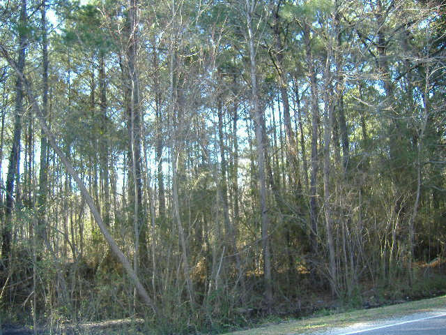 Old Moncks Corner Road Goose Creek, SC 29445