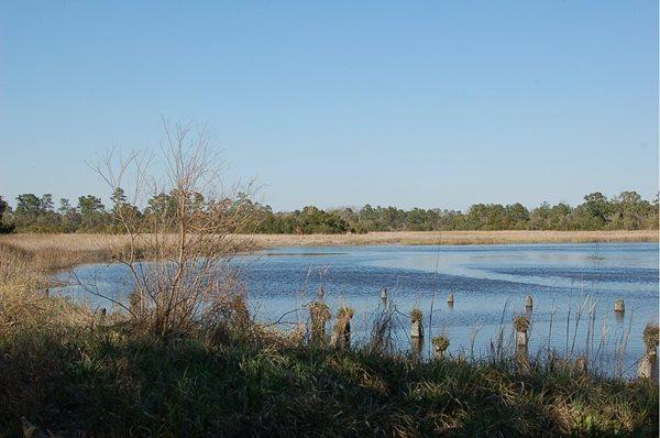 4151 Ashley River Road-Hwy 61 Charleston, SC 29414