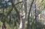9621 Two Pines Road, McClellanville, SC 29458