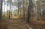 Wooded lot ready for your brand new custom home!